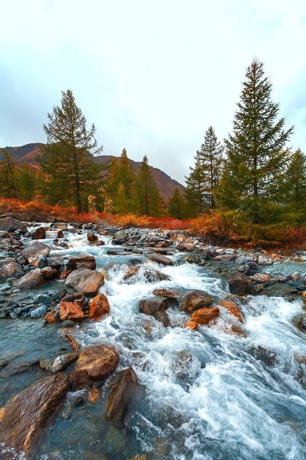 Turkusowa halna rzeka zdjęcie stock