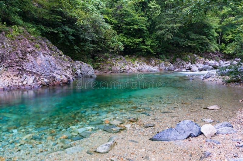 Turkusowy błękitny nawadnia rzeka w lesie zdjęcie royalty free