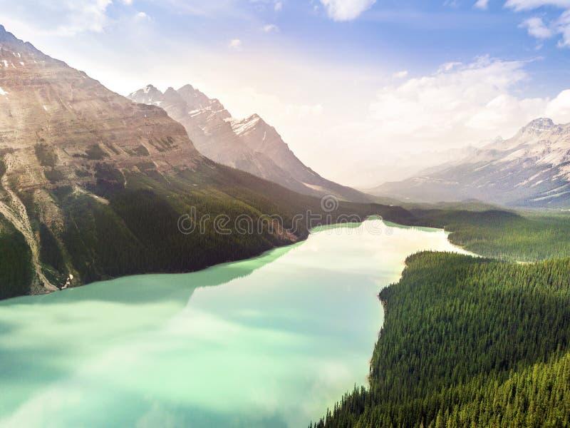 Turkusowy Peyto jezioro w Banff parku narodowym, Alberta, Kanada obraz royalty free