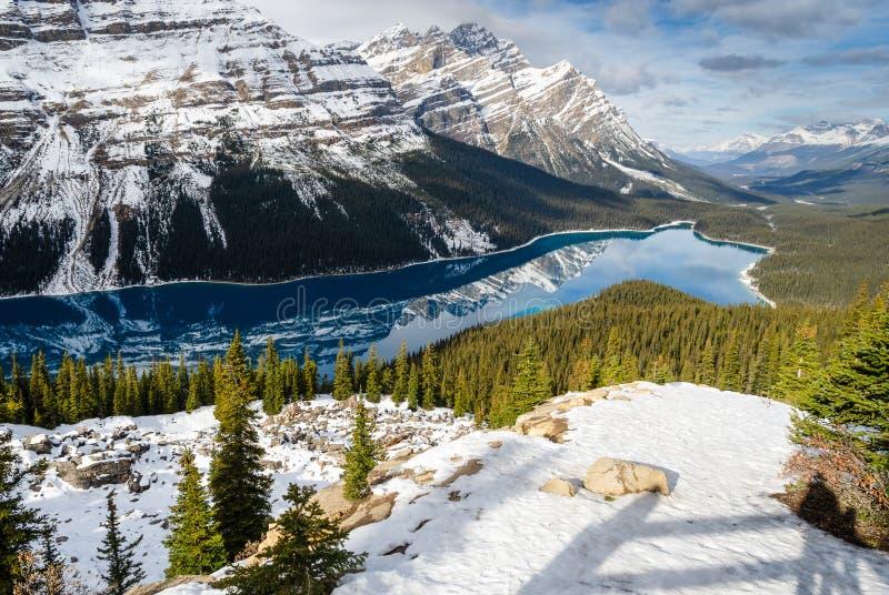 Turkusowy Peyto jezioro z odbiciem Kanadyjska Skalista góra w Alberta, Kanada Widzieć od łęku szczytu obraz royalty free