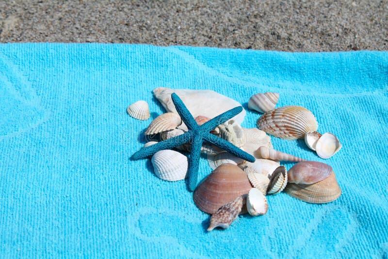 Turkusowy plażowy ręcznik i skorupy na plaży obraz royalty free