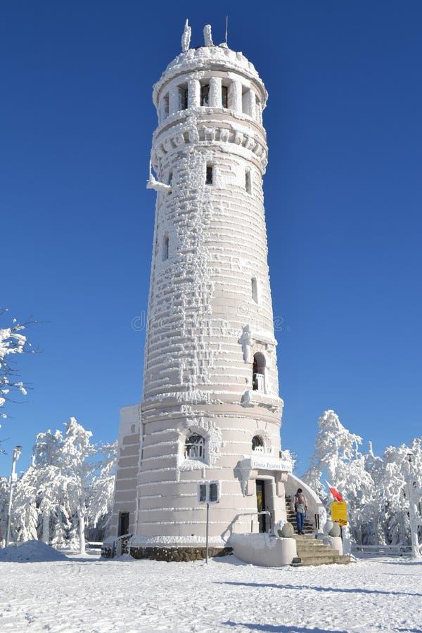 Turm im Winter stockbilder