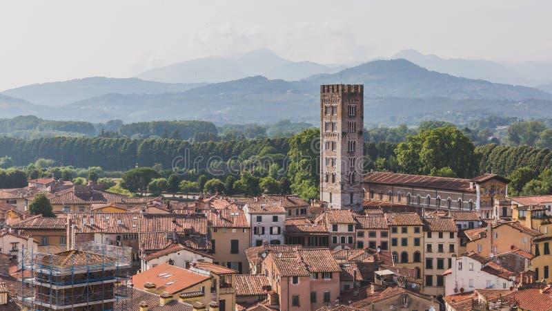 Turm und Basilika von San Frediano über Häusern von Lucca, Toskana, Italien, angesehen von Guinigi-Turm stockfoto