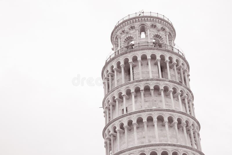 Turm von Pisa, Italien lizenzfreie stockfotos