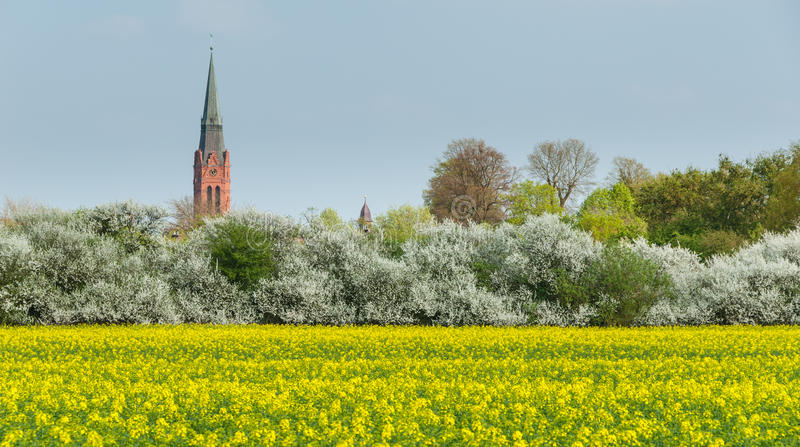 Turm von St Martin und Rathaus ragen in Nienburg hoch stockfotos