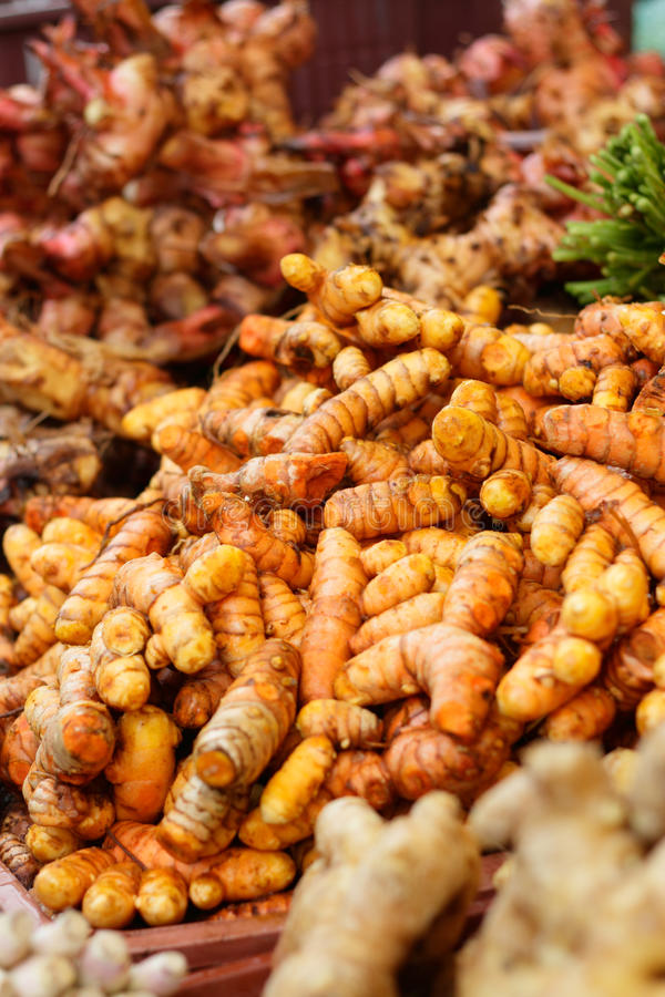 Download Turmeric stock photo. Image of vitamin, many, vertical - 18016258
