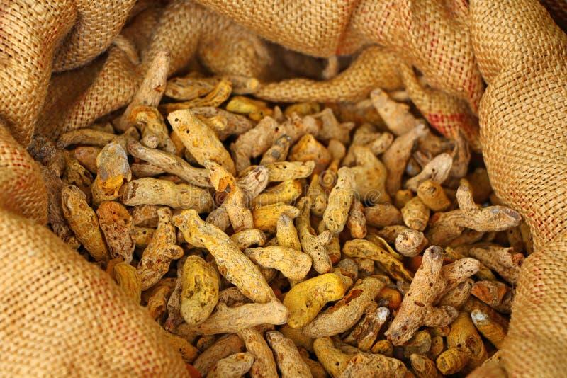 Turmeric korzenie w torbie Kurkumy zdjęcia royalty free