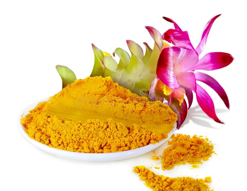 Turmeric powder with flower isolated on white background. Fresh Turmeric powder with flower isolated on white background stock images
