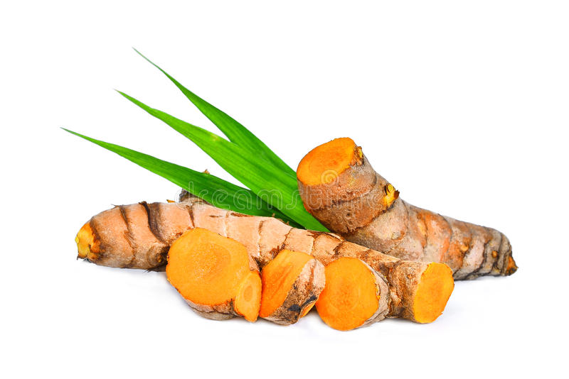 Turmeric root with green leaves isolated on white royalty free stock image
