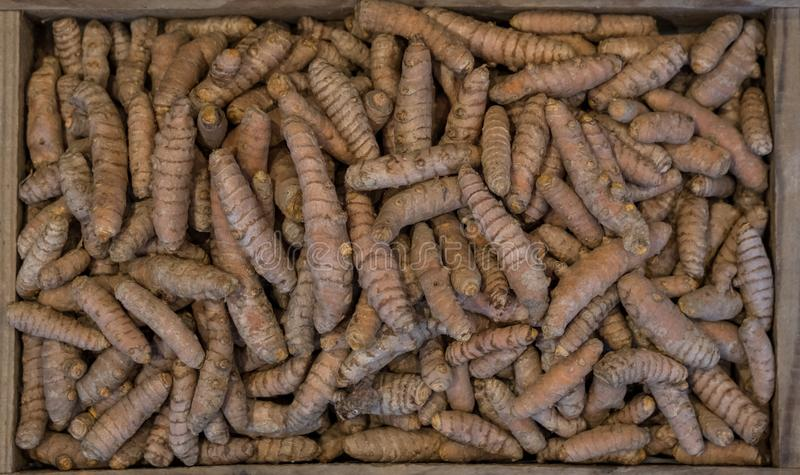 Turmeric roots in a wooden box, photographed from above. Turmeric is a cooking spice and has a variety of medicinal properties royalty free stock image