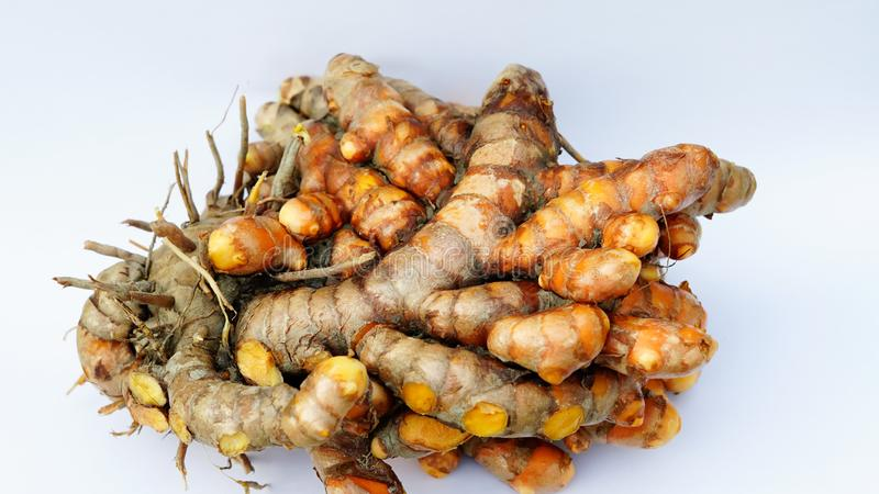 A big bundle of turmeric with white background.macro mode. stock photo