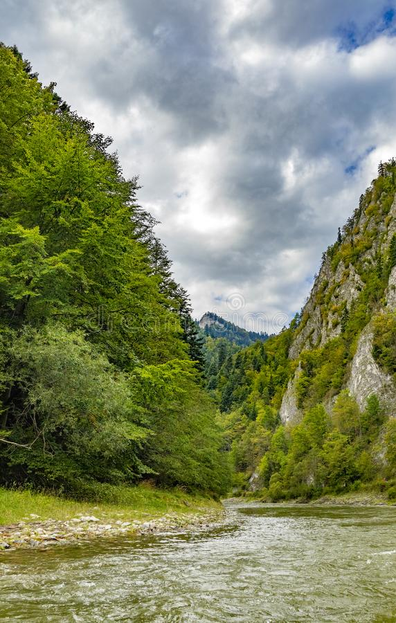 The turn of the river Dunajec stock images