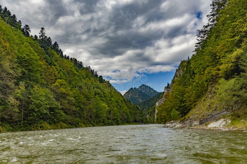 The turn of the river Dunajec. In Pieniny, Poland and Slovakia royalty free stock images