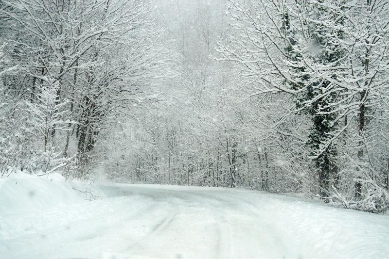 Turn on the road in a snowy forest. stock photography