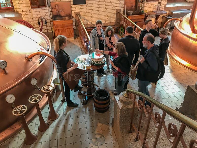 Turnera gruppen på avsmakning, det Heineken bryggeriet, Amsterdam arkivbild