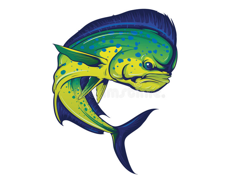 Turning Mahi Mahi Fish vector illustration