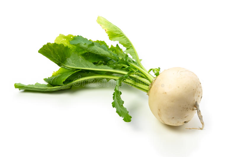 Turnip. Cooking ingredient series turnip. for adv etc. of restaurant,grocery,and others royalty free stock image