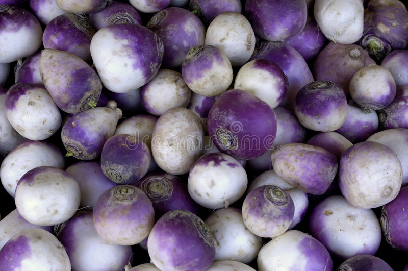 Turnip. Stall of turnip at the market stock photography