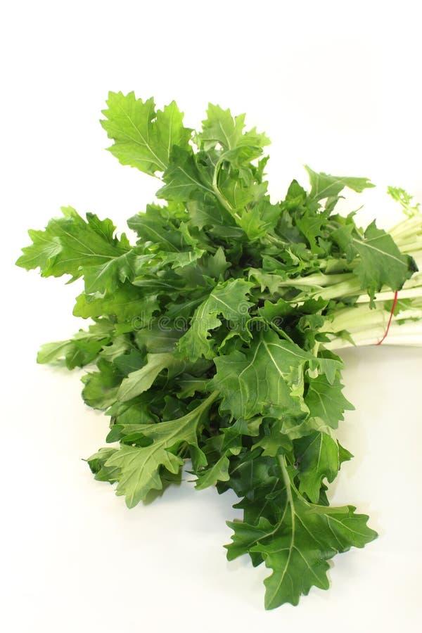 Download Turnip Greens Stock Photos - Image: 29029823