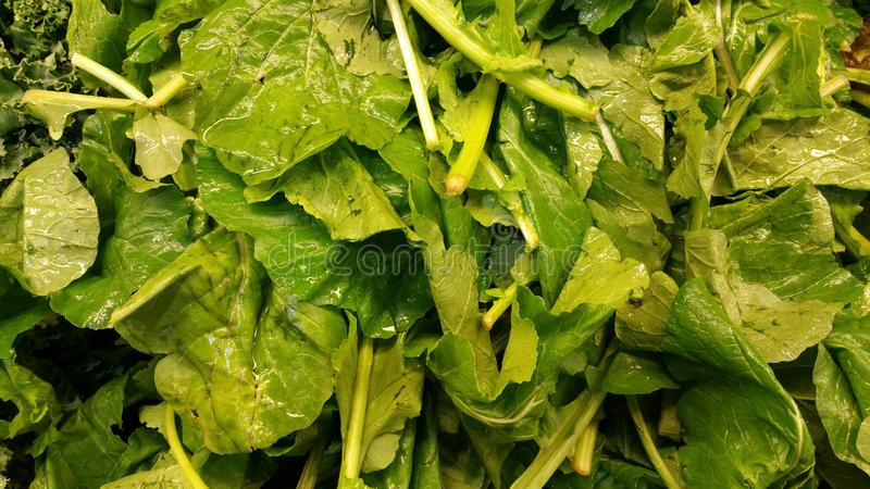 Turnip Greens. At a produce stand royalty free stock image