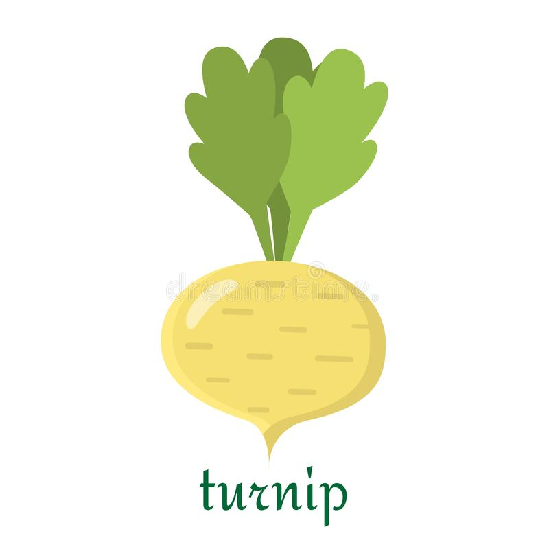 Turnip icon in flat style isolated on white background. vector illustration