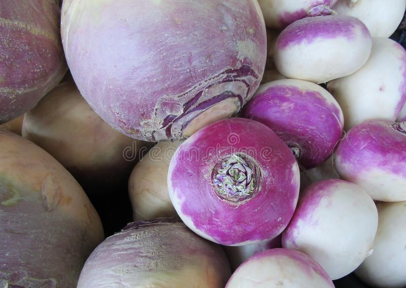 Turnips at a market stall stock image