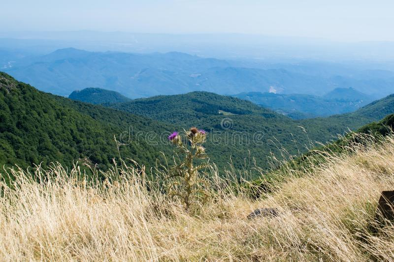 Turo de l'Home valley, natural park of Montseny in Spain. Turo de l'Home valley royalty free stock photography
