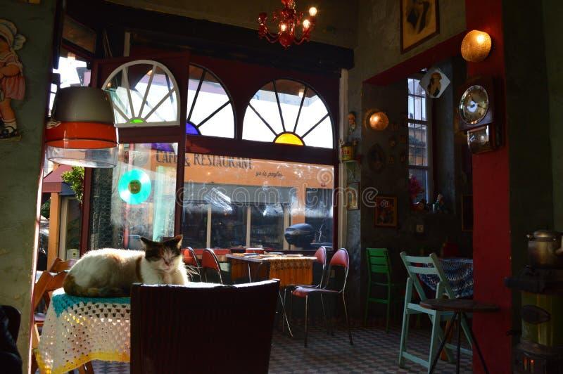 Turquia Istambul - 8 de janeiro de 2018: Café acolhedor no estilo do vintage fotografia de stock royalty free