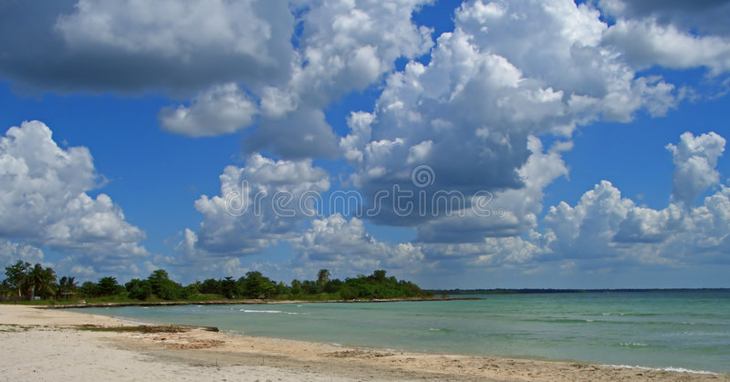 Download Turquoise beach stock photo. Image of palms, beautiful - 3306552