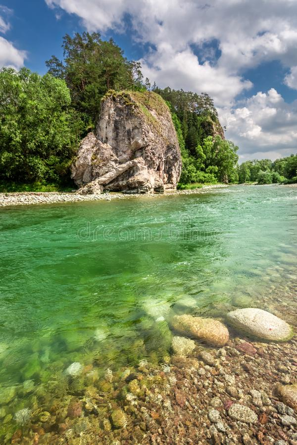 Turquoise Bialka River in the pieniny mountains in sunny day. Europe royalty free stock image