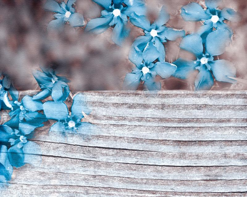 Turquoise blue and sepia Floral Vintage background royalty free stock images