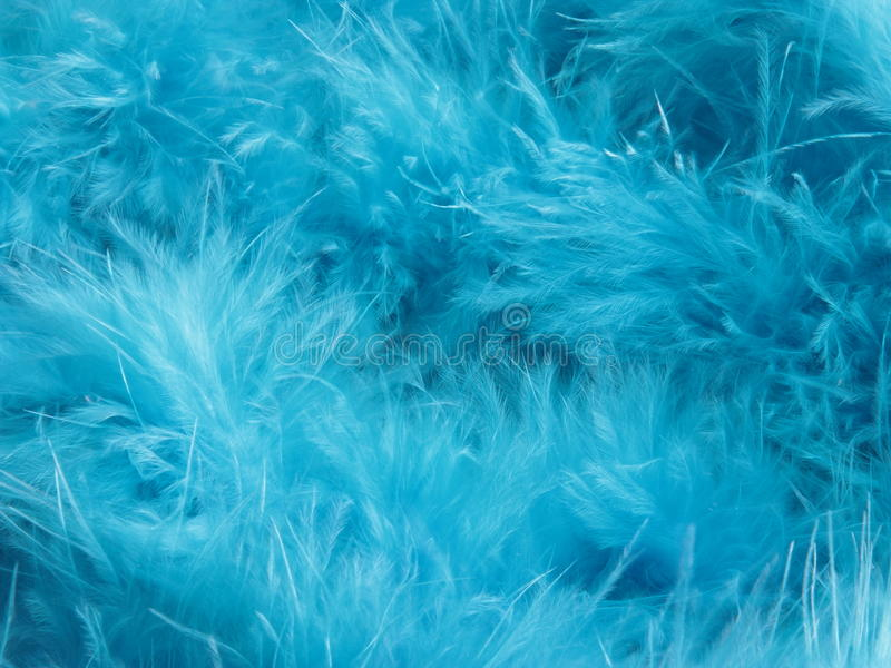 Turquoise feathers background - stock photo. Turquoise feathers background - blue green feather abstract pattern royalty free stock photos