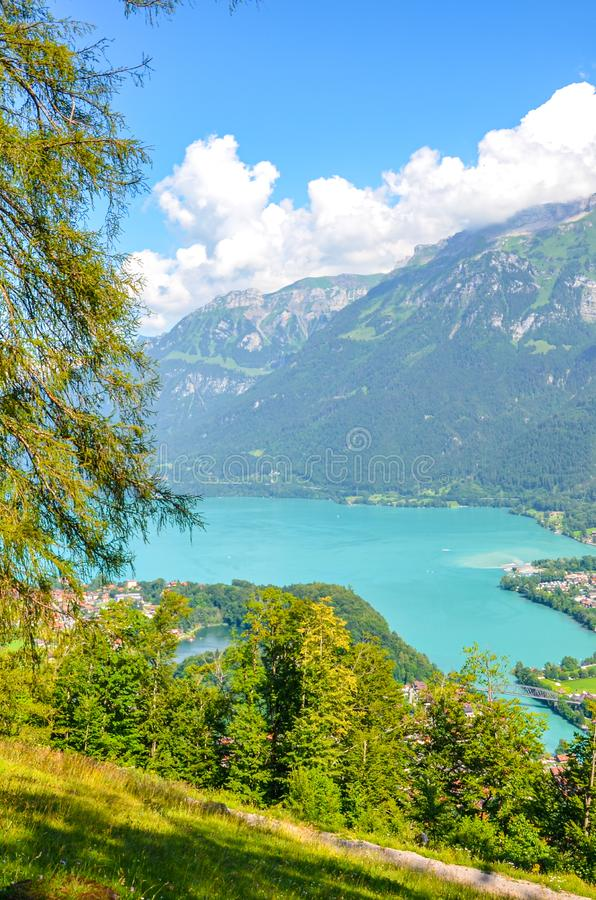 Turquoise Lake Brienz in Interlaken, Switzerland photographed from the hiking path to Harder Kulm. Amazing Swiss landscape. Green royalty free stock photography