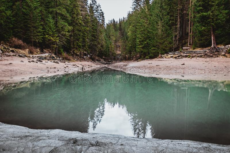 Turquoise lake with pines in the background stock photos