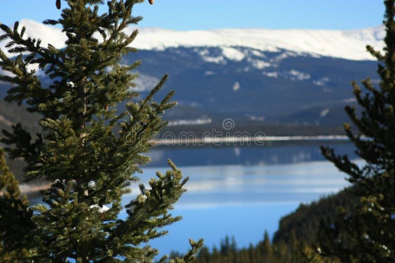 Turquoise Lake royalty free stock images