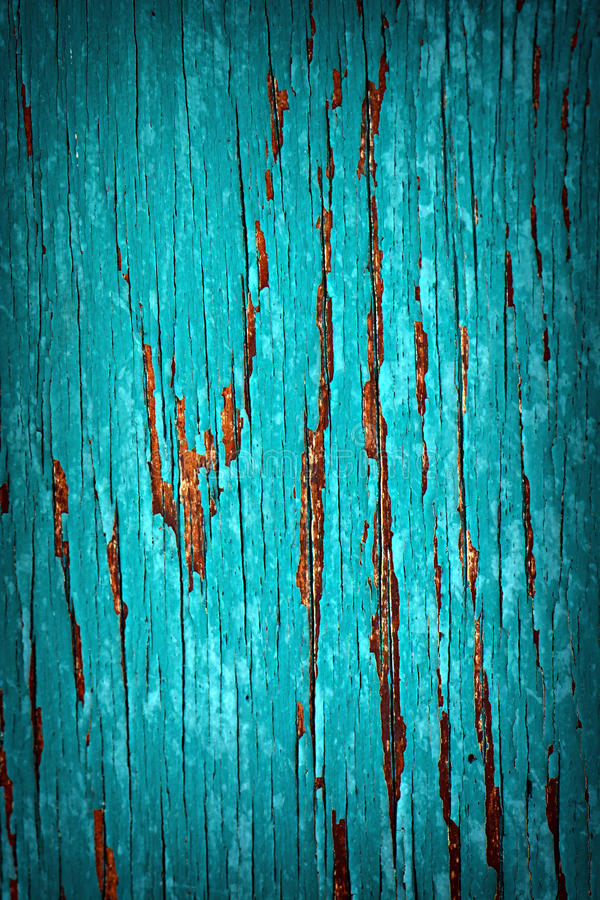 Turquoise Peeled Paint. A detailed close up macro photograph of peeled paint on a wood substrate. A great texture image for a background or overlay stock photography