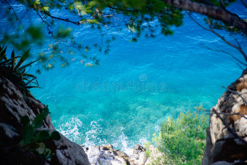 Turquoise sea between the trees royalty free stock image