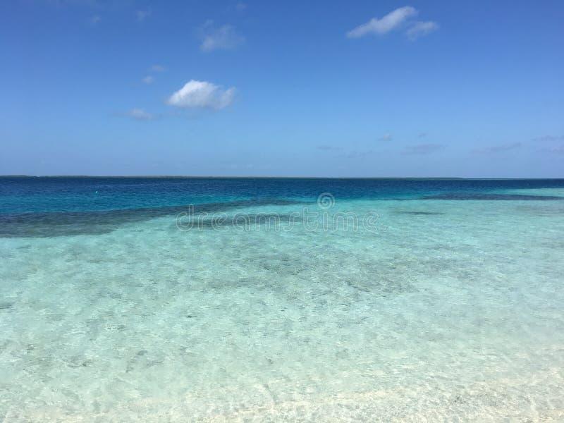 Turquoise Shoreline Caribbean Sea Belize Mexico stock photo