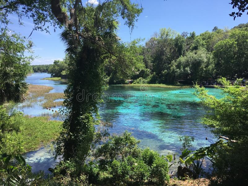 Turquoise Spring On River stock photo
