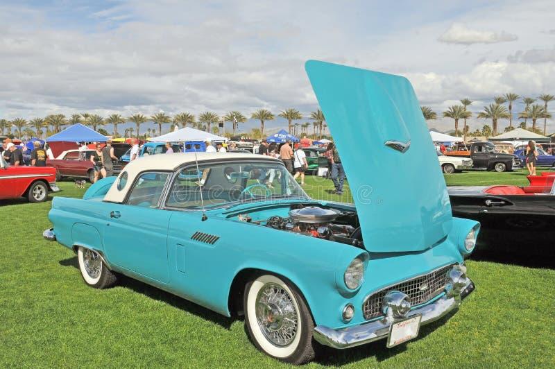 Turquoise Thunderbird image stock
