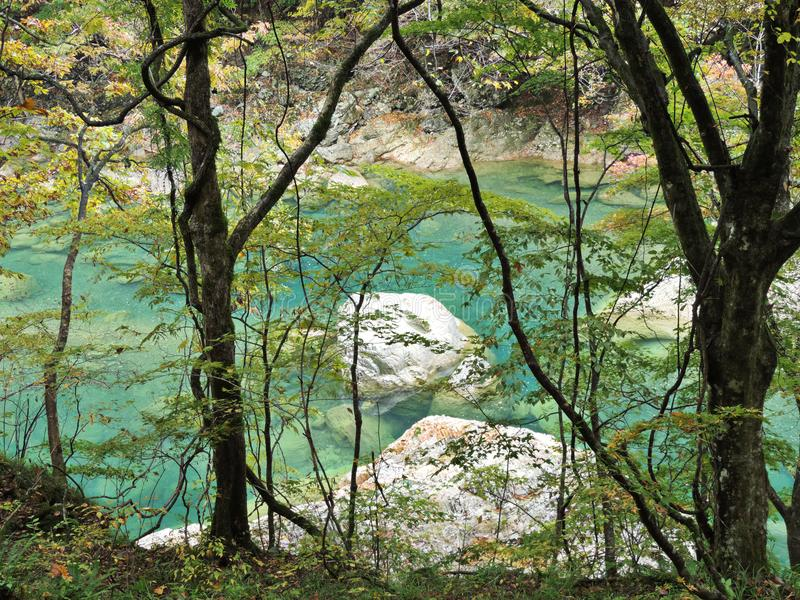 Turquoise water stream at Dakigaeri Gorge in Japan. Turquoise water stream at Dakigaeri Gorge in Akita prefecture of Japan stock photography