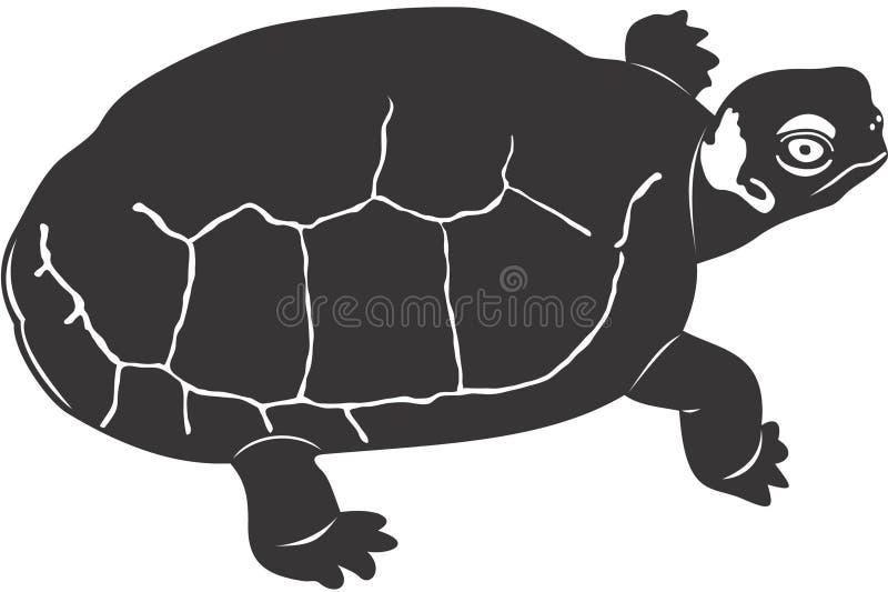 Download Turtle stock illustration. Image of animal, turtle, nature - 1410192
