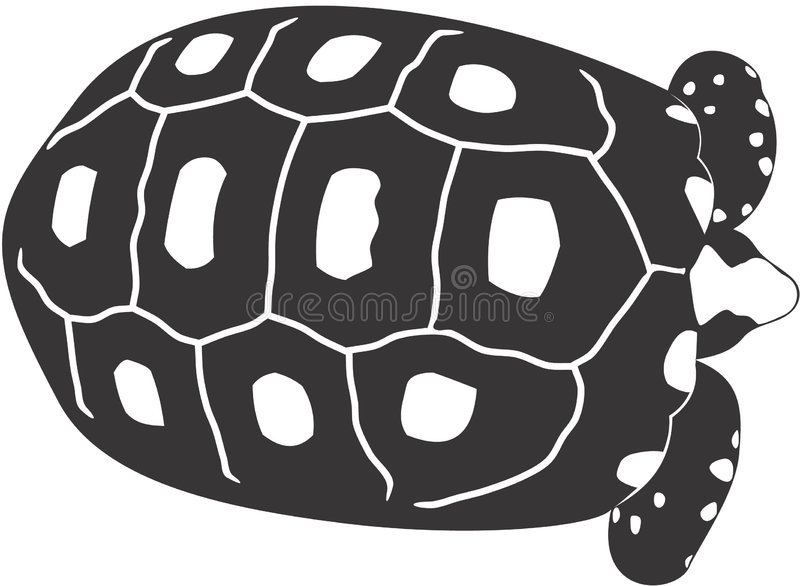 Download Turtle stock illustration. Image of clipart, shell, wildlife - 1410195