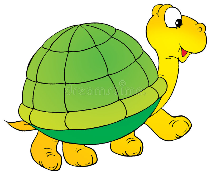 Turtle. Isolated clip-art and children's illustration for yours design, postcard, album, cover, scrapbook, etc