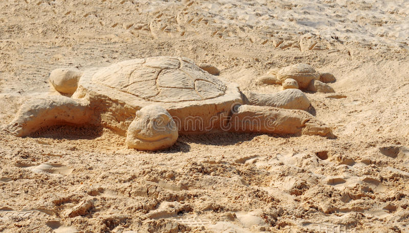 Download Turtle Royalty Free Stock Photo - Image: 23601315