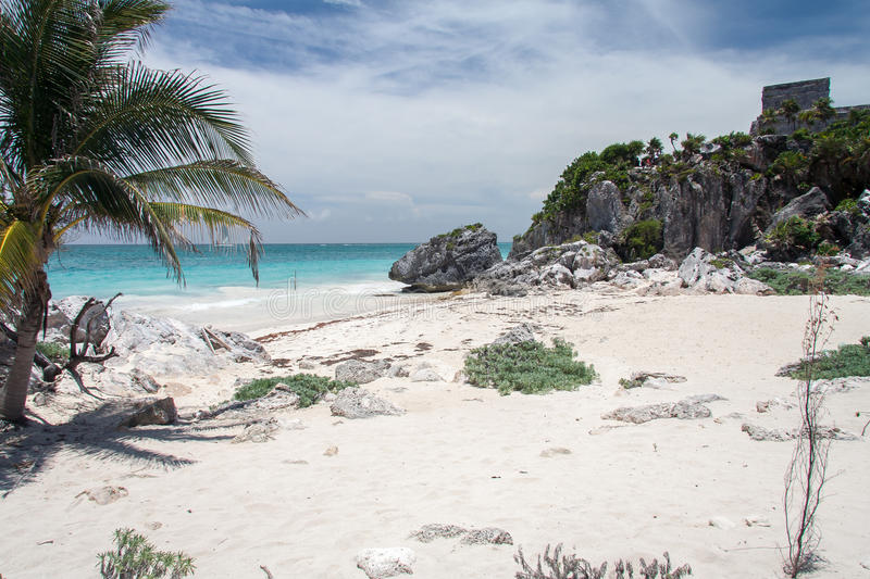 Turtle Beach Tulum Yucatan Peninsula Mexico. The Turtle beach with its white sand, the turquoise waters of the caribbean ocean, a palm tree and a mayan temple on royalty free stock image