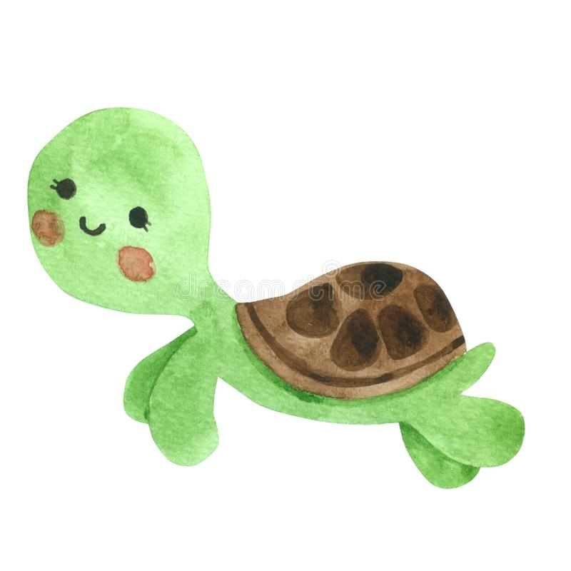 Turtle Cartoon watercolor on white background , Hand drawn character for Kids, Greeting Card , Cases design, Postcards, vector illustration