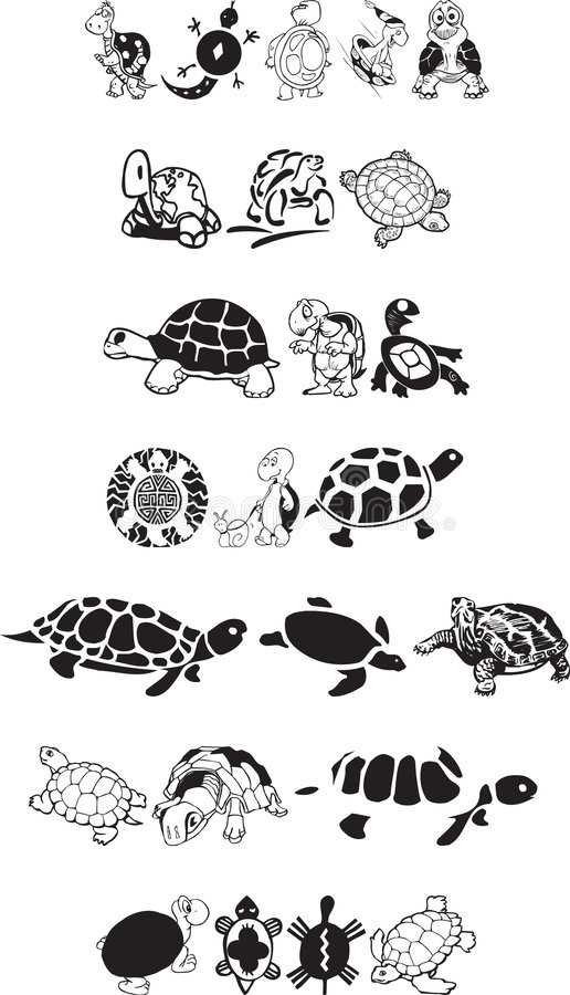 Turtle collection royalty free stock image
