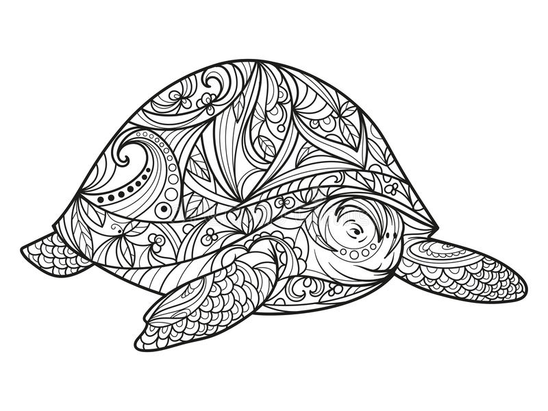 Download Turtle Coloring Book For Adults Vector Stock