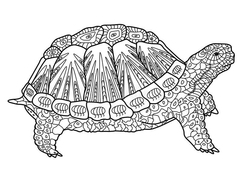 Turtle Coloring Book For Adults Vector Stock Vector - Illustration ...